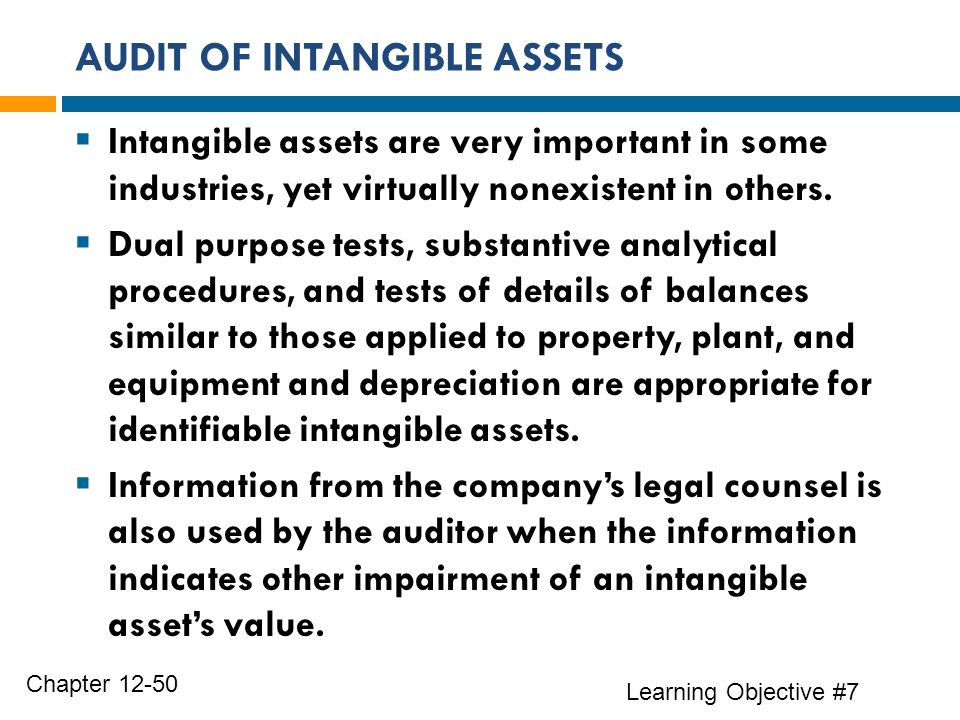 AUDIT OF INTANGIBLE ASSETS