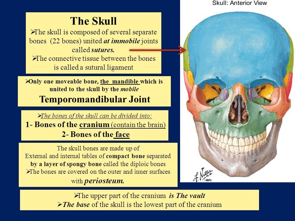 Temporomandibular Joint Ppt Video Online Download