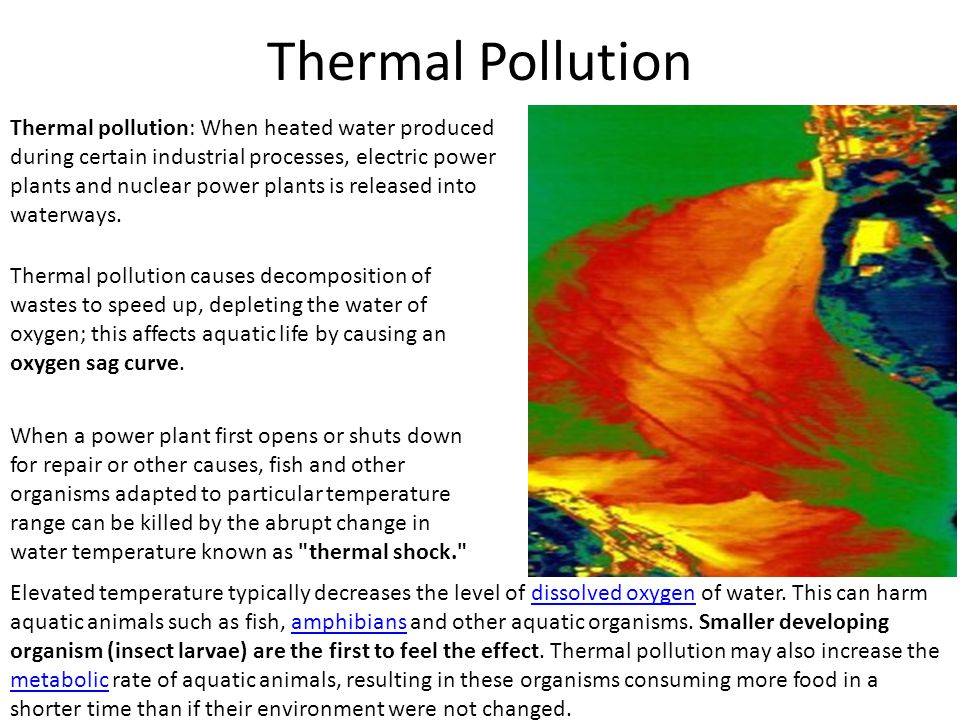 thermal pollution short essay Essay on thermal pollution: sources, effects and control thermal pollution is the degradation of water quality by any process that increases the ambient water temperature.