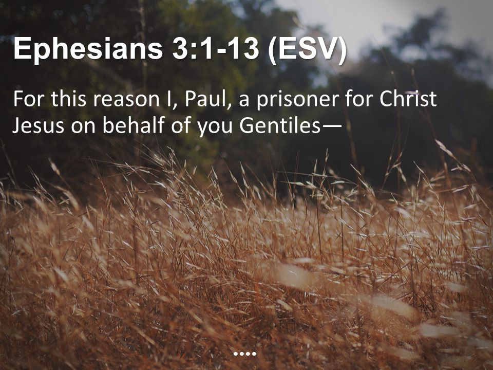 Ephesians 3:1-13 (ESV) For this reason I, Paul, a prisoner for Christ Jesus on behalf of you Gentiles—
