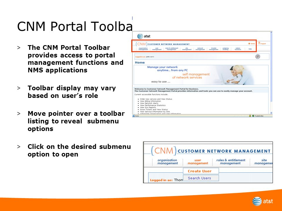 CNM Portal Toolbar The CNM Portal Toolbar provides access to portal management functions and NMS applications.