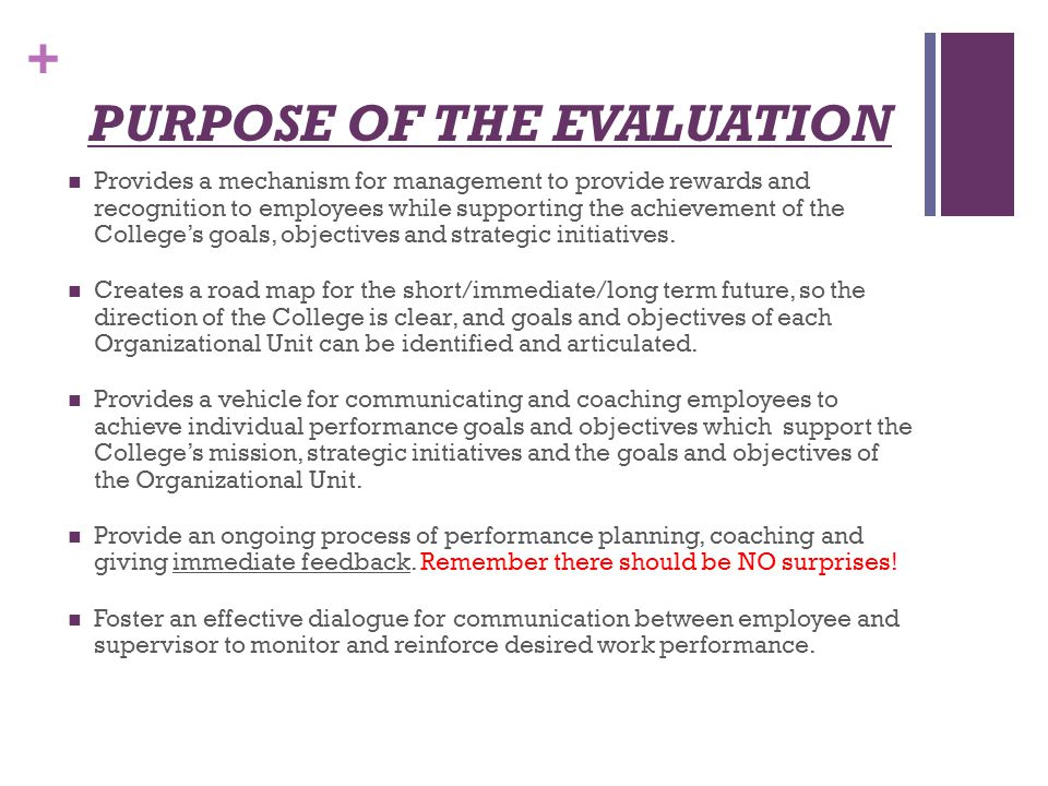 The Importance of an Employee Evaluation