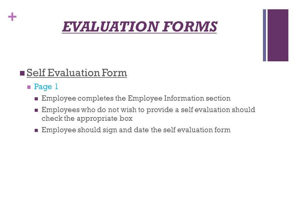 Employee Evaluation  BesikEightyCo