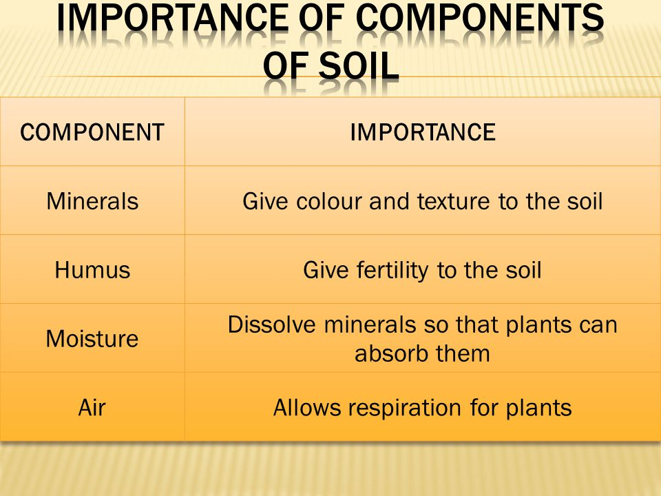 Importance of Components OF SOIL