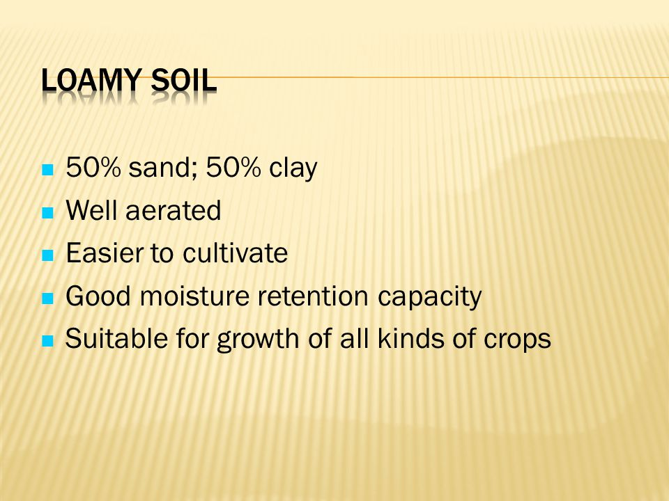 Loamy Soil 50% sand; 50% clay Well aerated Easier to cultivate