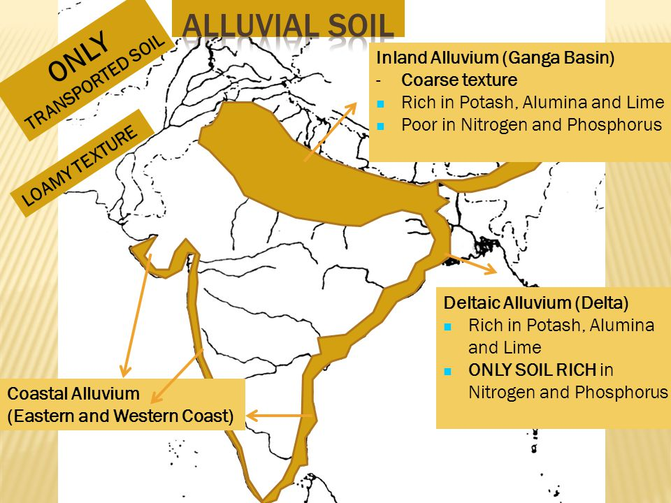 Alluvial Soil ONLY TRANSPORTED SOIL Inland Alluvium (Ganga Basin)