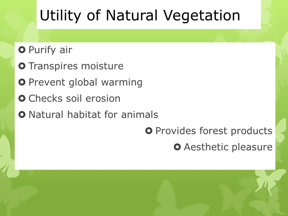 Mineral based industries ppt download for Utility of soil