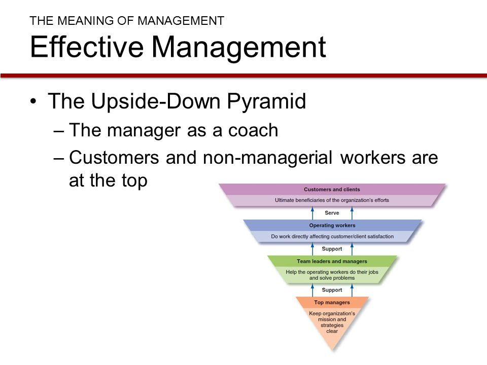 upside down pyramid view of organizations Upside down pyramid view of organizations john doe mr doe ap lang 4th 31 august 2013 upside-down the morning of 27 february 2013 was just like any other morning of the year.