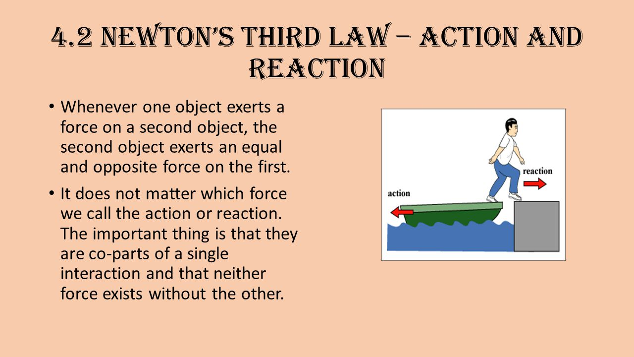 Newton's third law of motion – action and reaction - ppt ...
