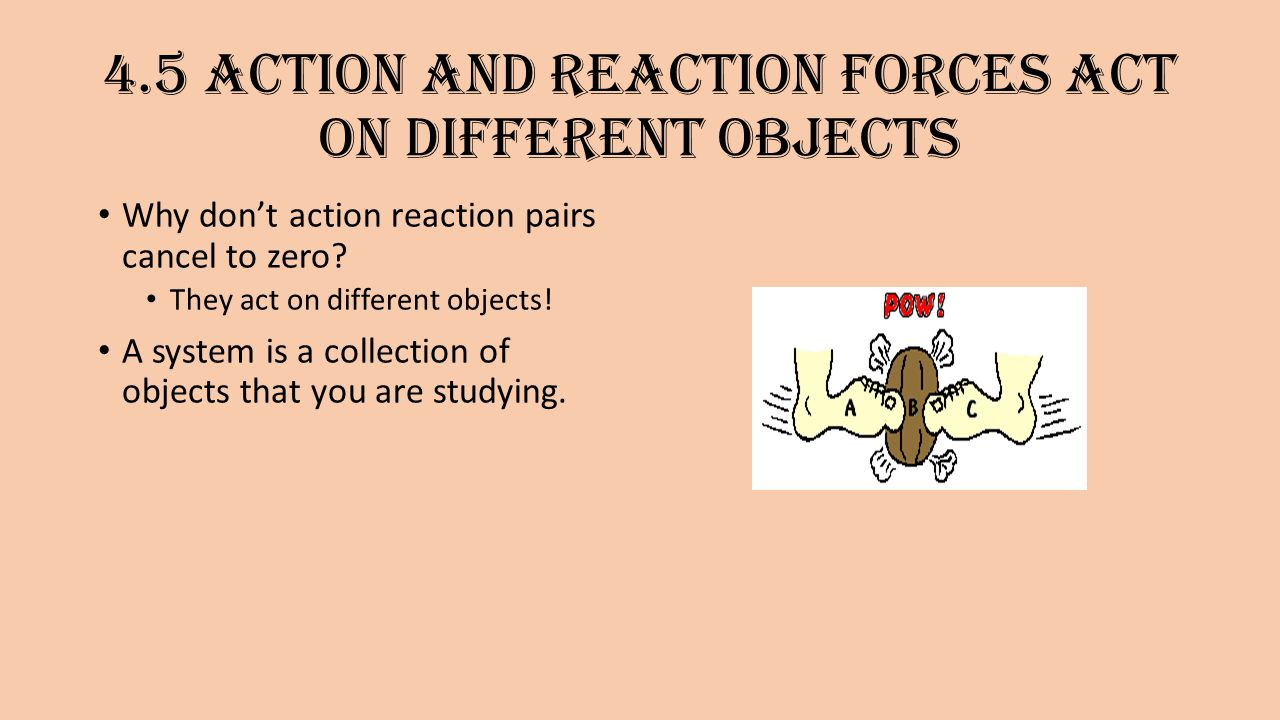 Newton S Third Law Of Motion Action And Reaction Ppt