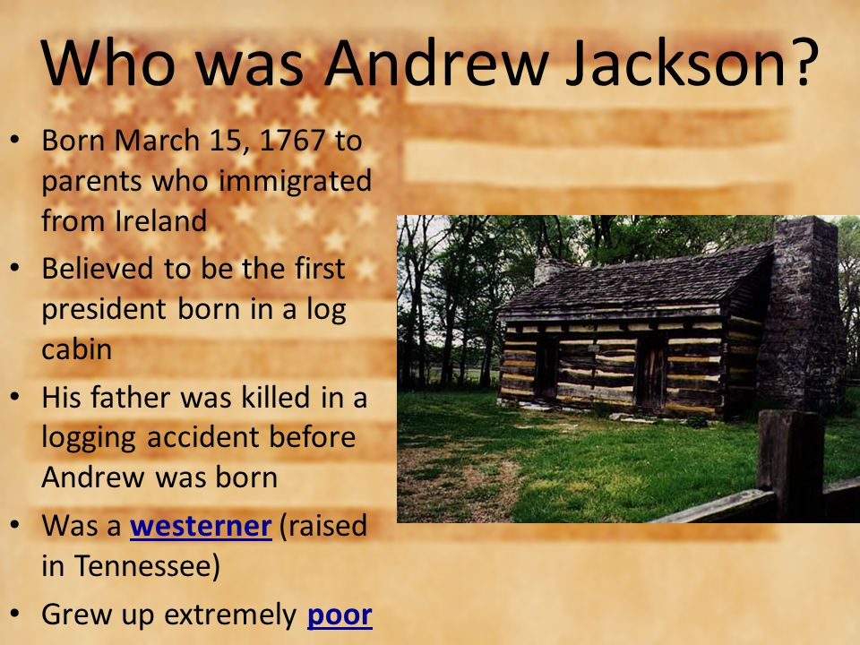 rise of democracy and andrew jackson