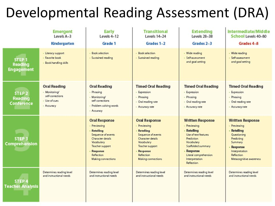 Essay in developmental reading