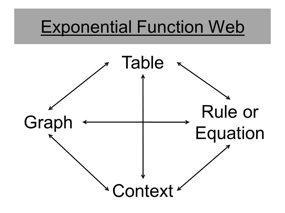 Exponential Function Web