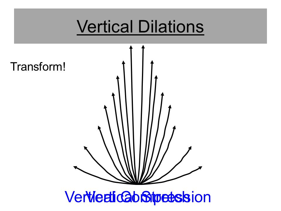 Vertical Dilations Transform! Vertical Stretch Vertical Compression