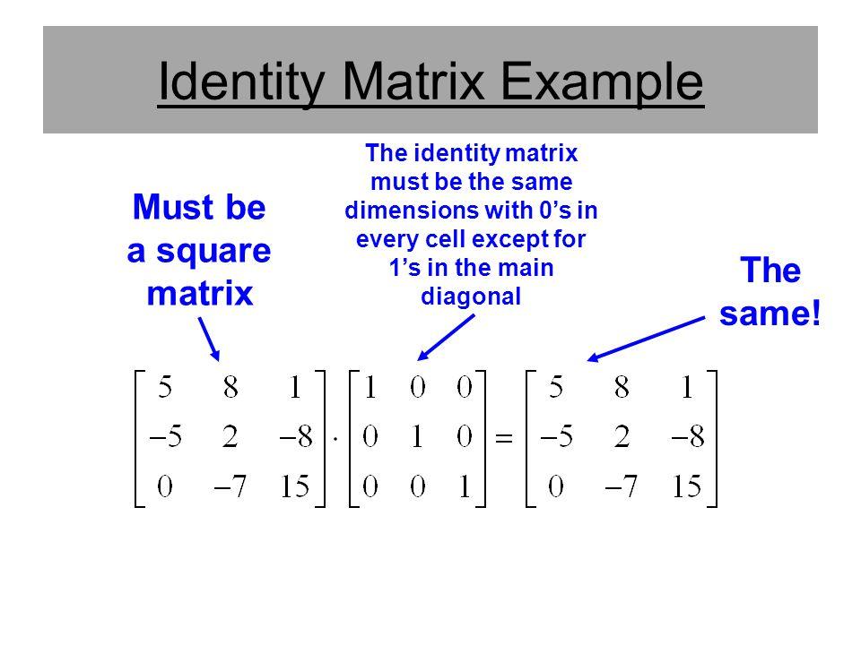 Identity Matrix Example