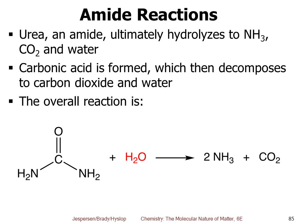 Amide Reactions Urea, an amide, ultimately hydrolyzes to NH3, CO2 and water.