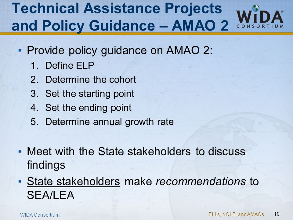 Technical Assistance Projects and Policy Guidance – AMAO 2