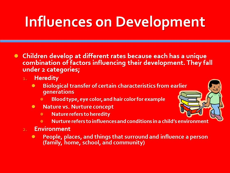 Influences that affect children s development