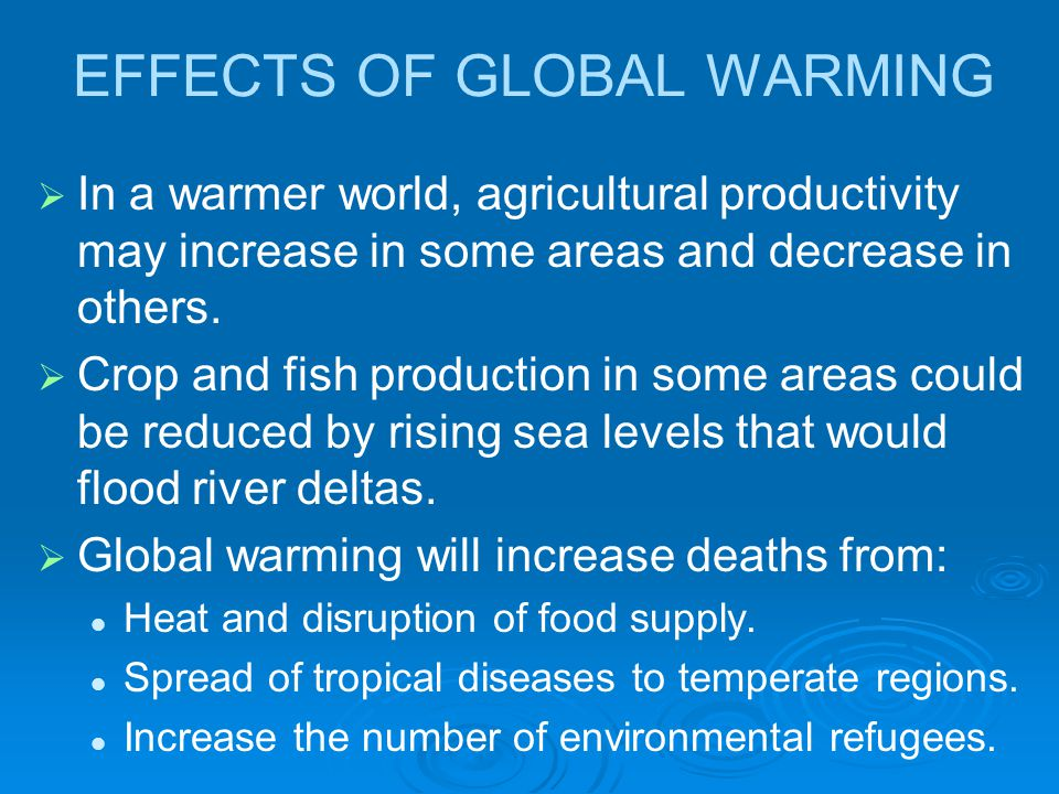 effects of global worming on the world