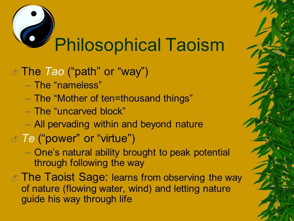 What's the difference between Reigious Taoism and Philisophical Taoism?