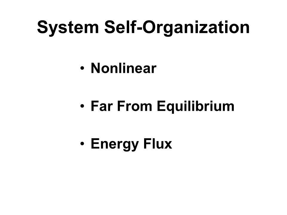 System Self-Organization