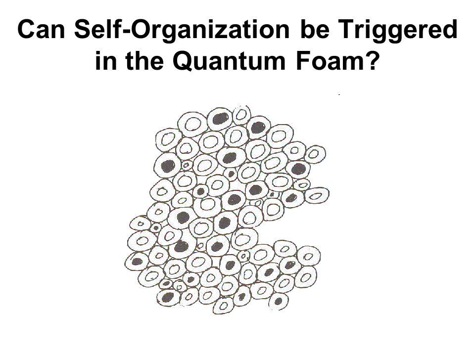 Can Self-Organization be Triggered in the Quantum Foam