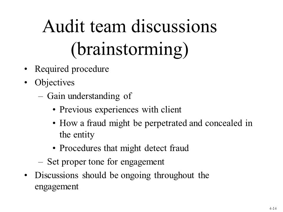 Audit team discussions (brainstorming)