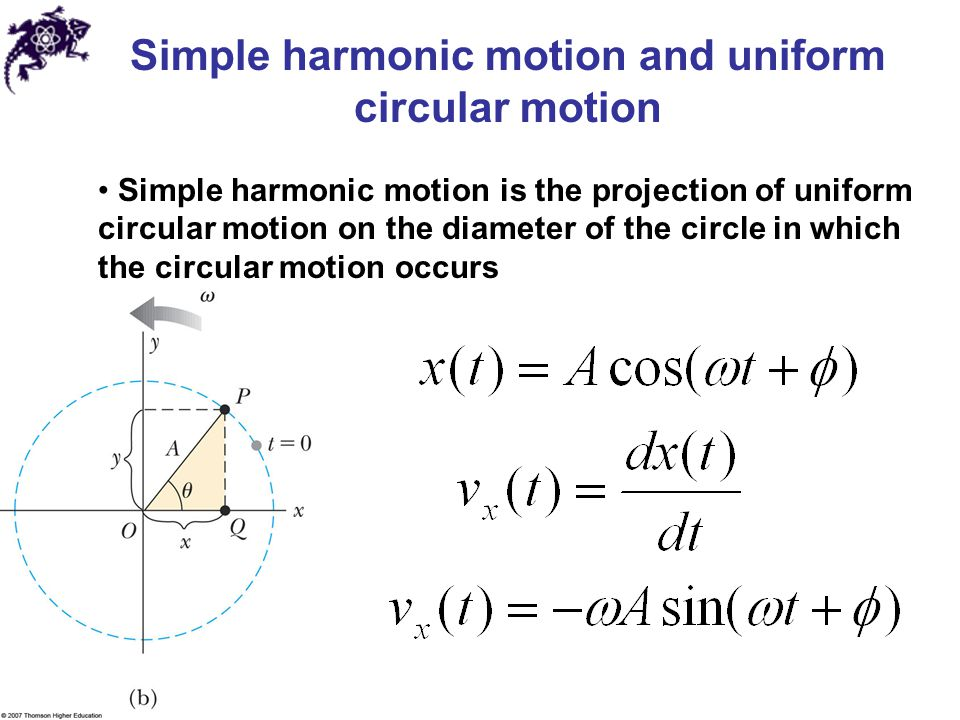 Simple Harmonic Motion Test
