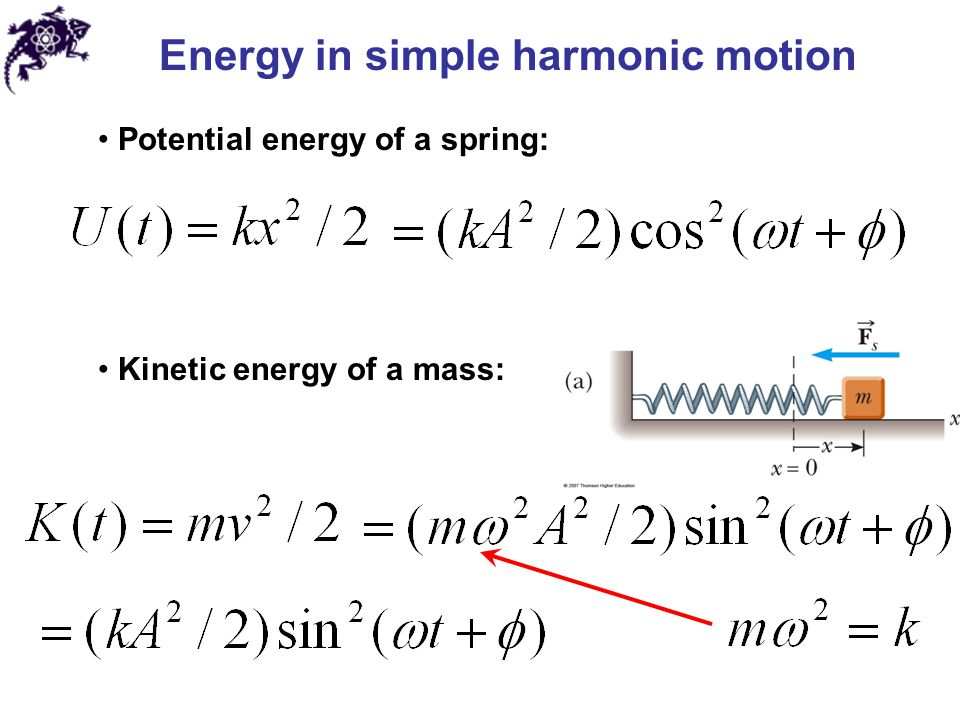 how to find phase angle in simple harmonic motion