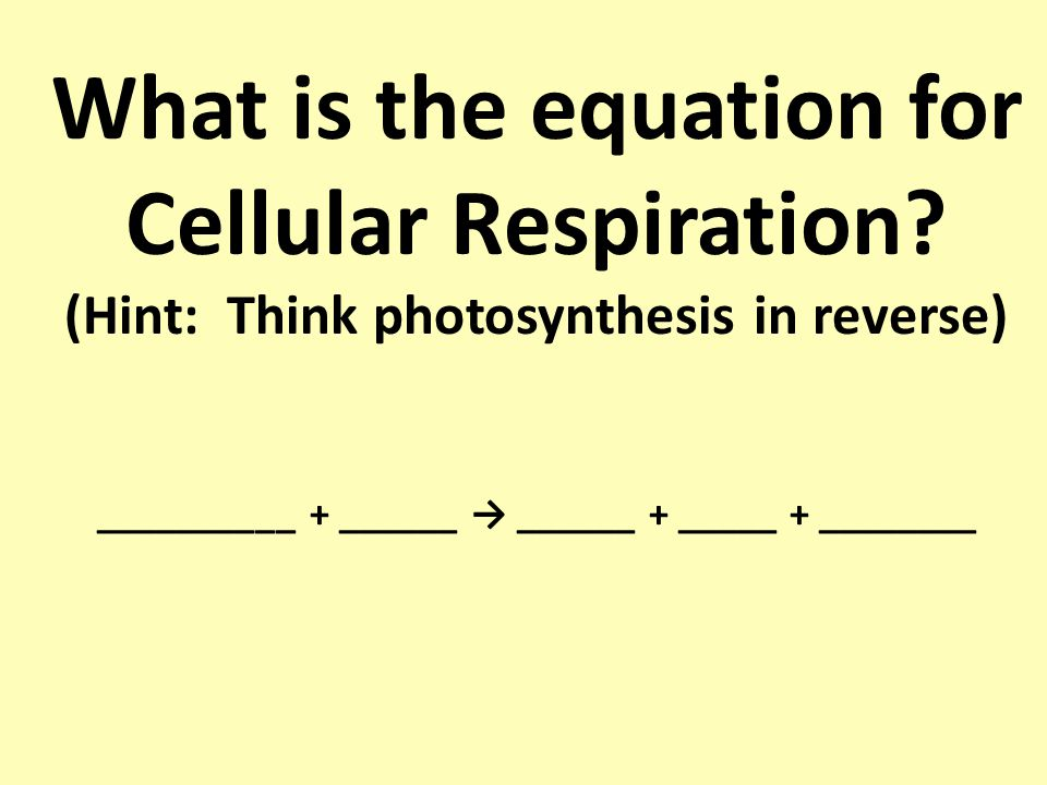 how to remember cellular respiration equation