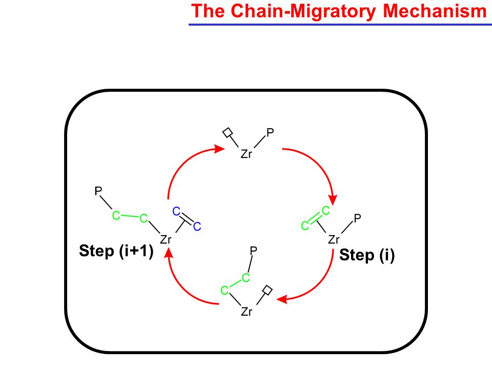The Chain-Migratory Mechanism