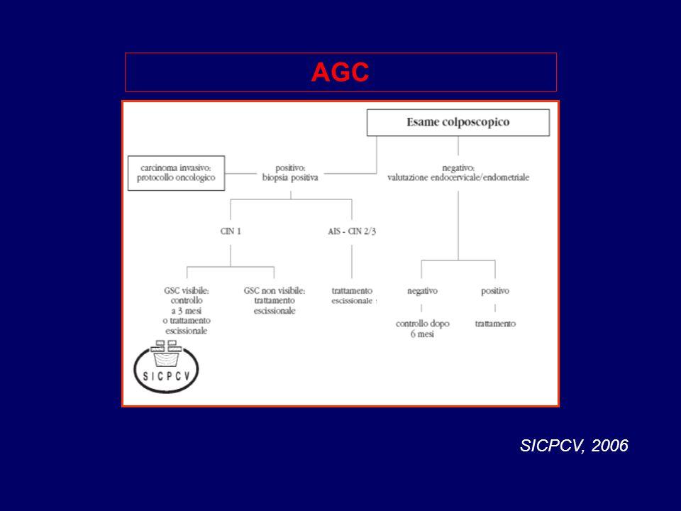 AGC SICPCV, 2006