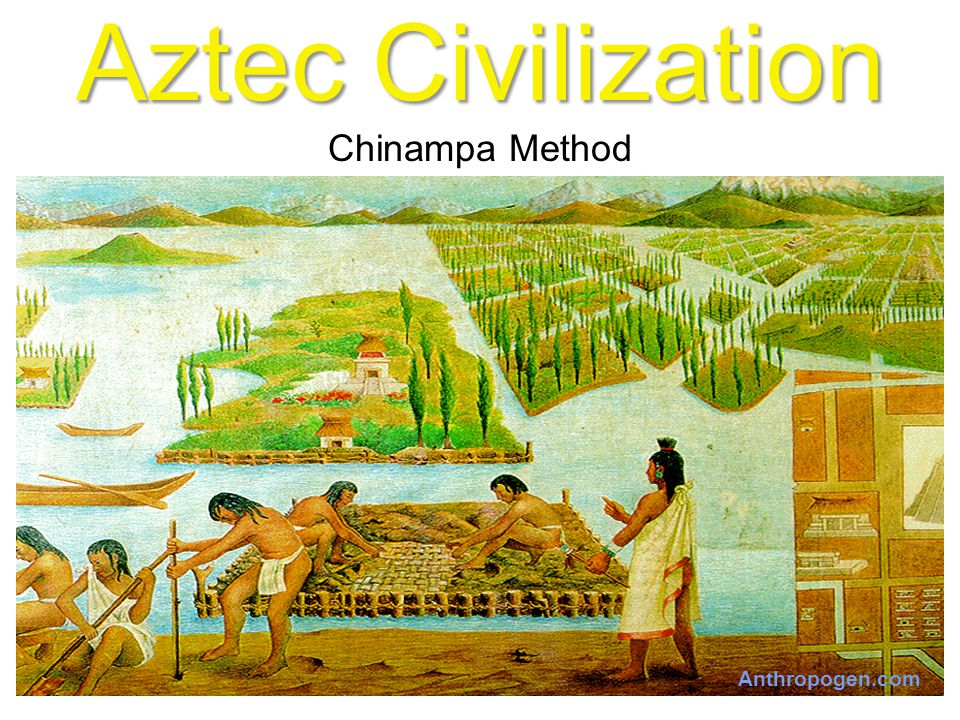 Civilizations of the Americas - ppt video online download