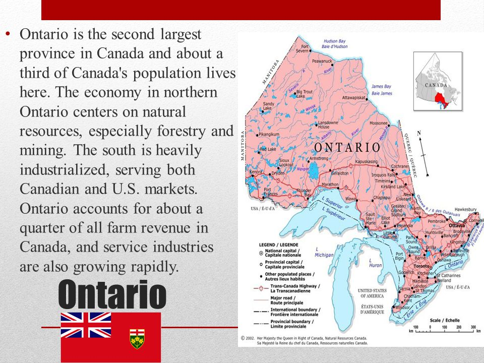 Ontario is the second largest province in Canada and about a third of Canada s population lives here. The economy in northern Ontario centers on natural resources, especially forestry and mining. The south is heavily industrialized, serving both Canadian and U.S. markets. Ontario accounts for about a quarter of all farm revenue in Canada, and service industries are also growing rapidly.
