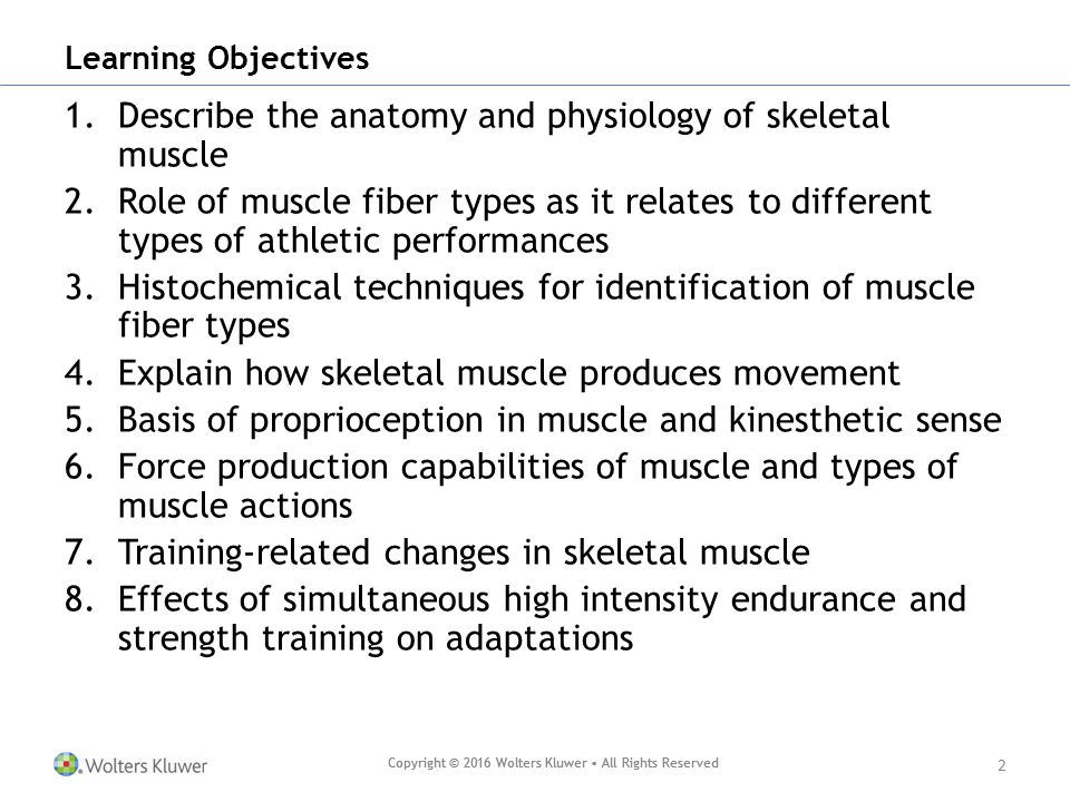 Fine Anatomy And Physiology Learning Objectives Adornment - Human ...