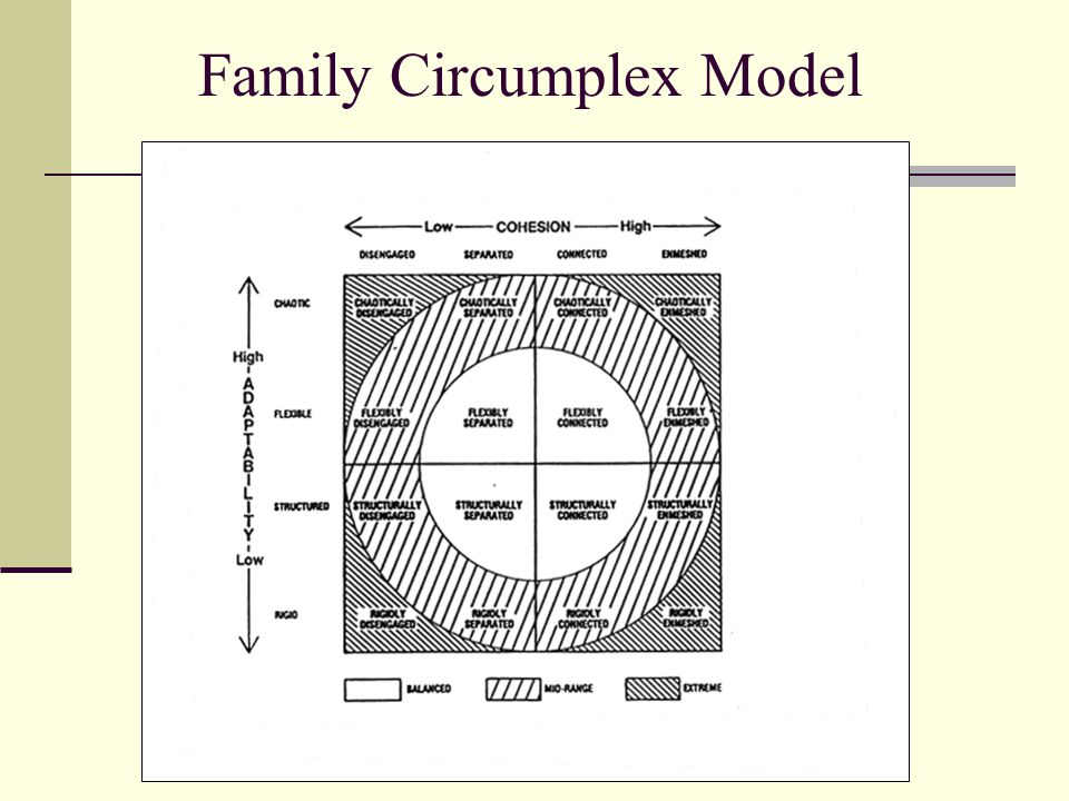Family Therapy Model