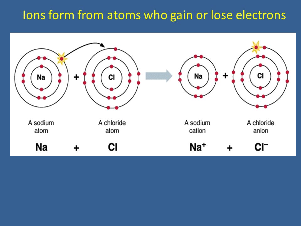 Ions form from atoms who gain or lose electrons