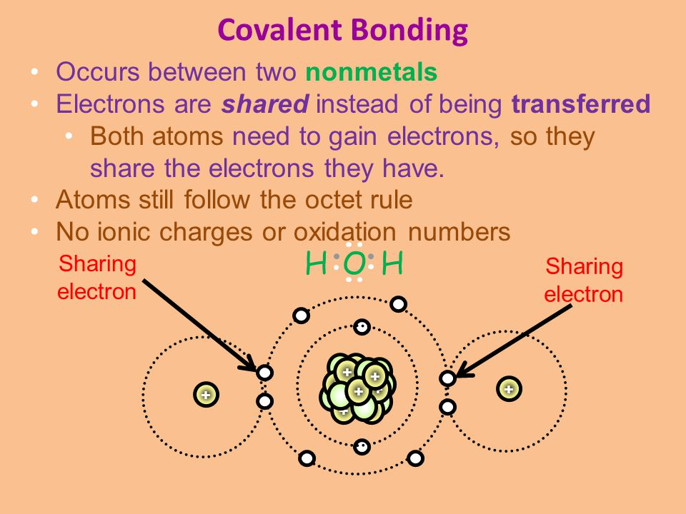 Covalent Bonding H O H Occurs between two nonmetals