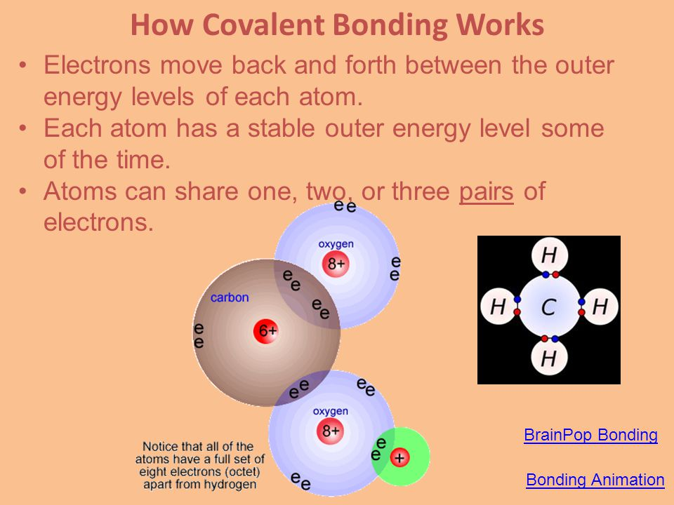 chapter 5 atoms and bonding do now