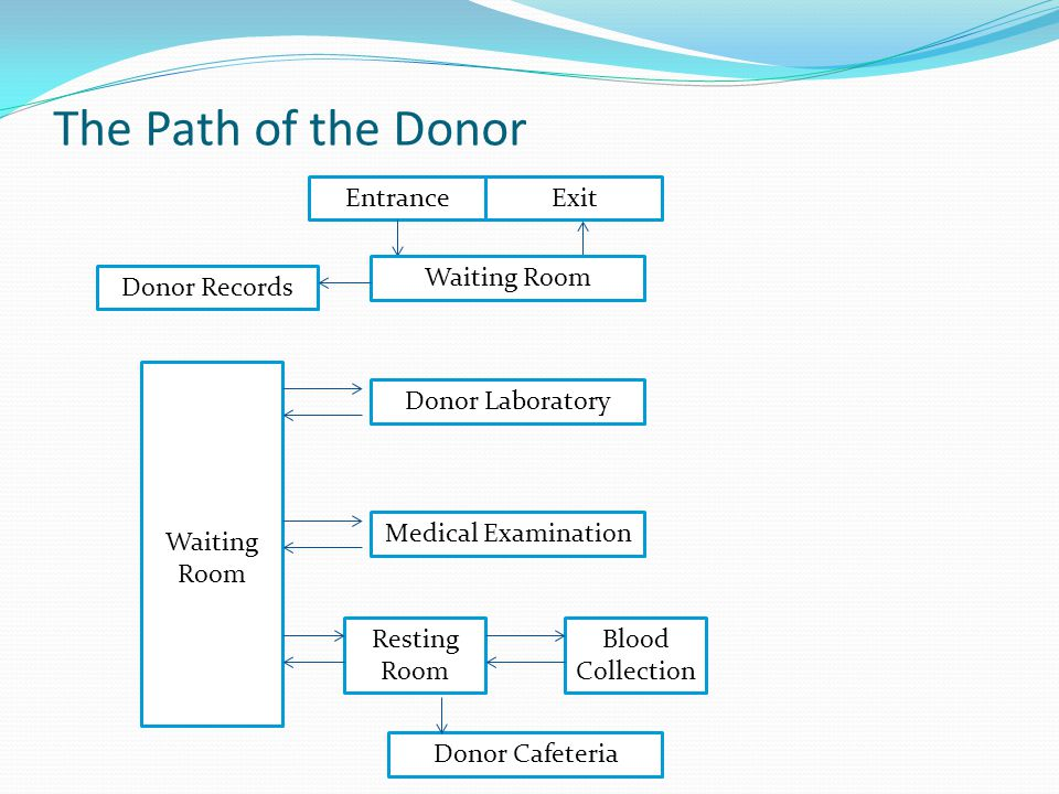 The Path of the Donor Entrance Exit Waiting Room Donor Records