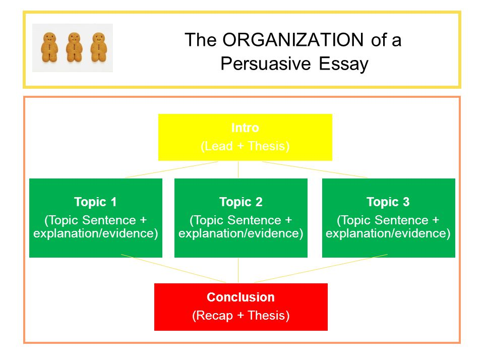 do now thinking in threes ppt the organization of a persuasive essay