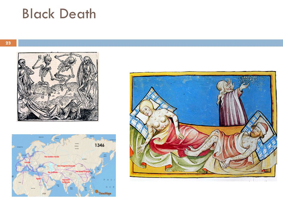 an analysis of the effects that the plague or the black death had on the economic and social life of Effects of the plague during the 15th century renaissance introduction the social effects of the plague of the black plague they had emerged with.