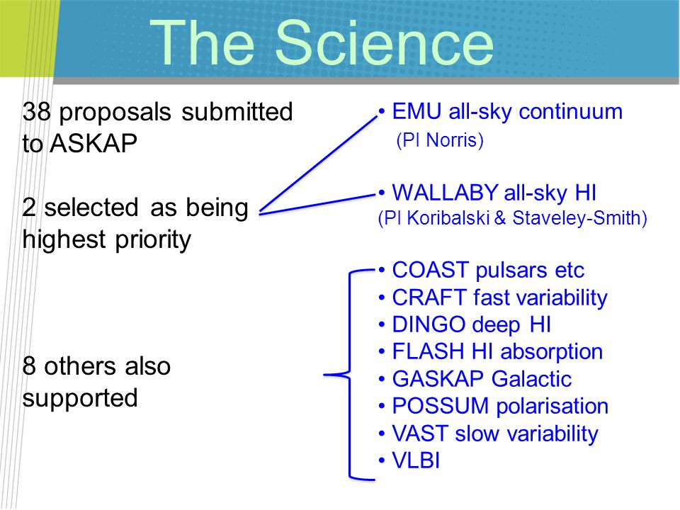 The Science 38 proposals submitted to ASKAP