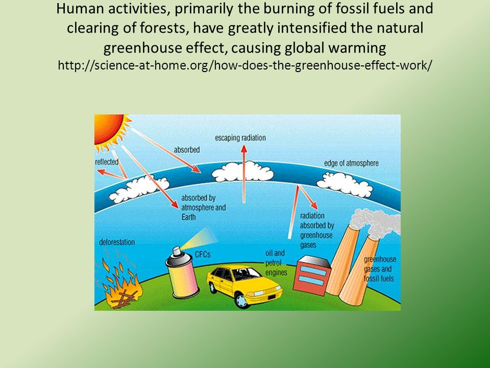 human activities that affect the environment pdf