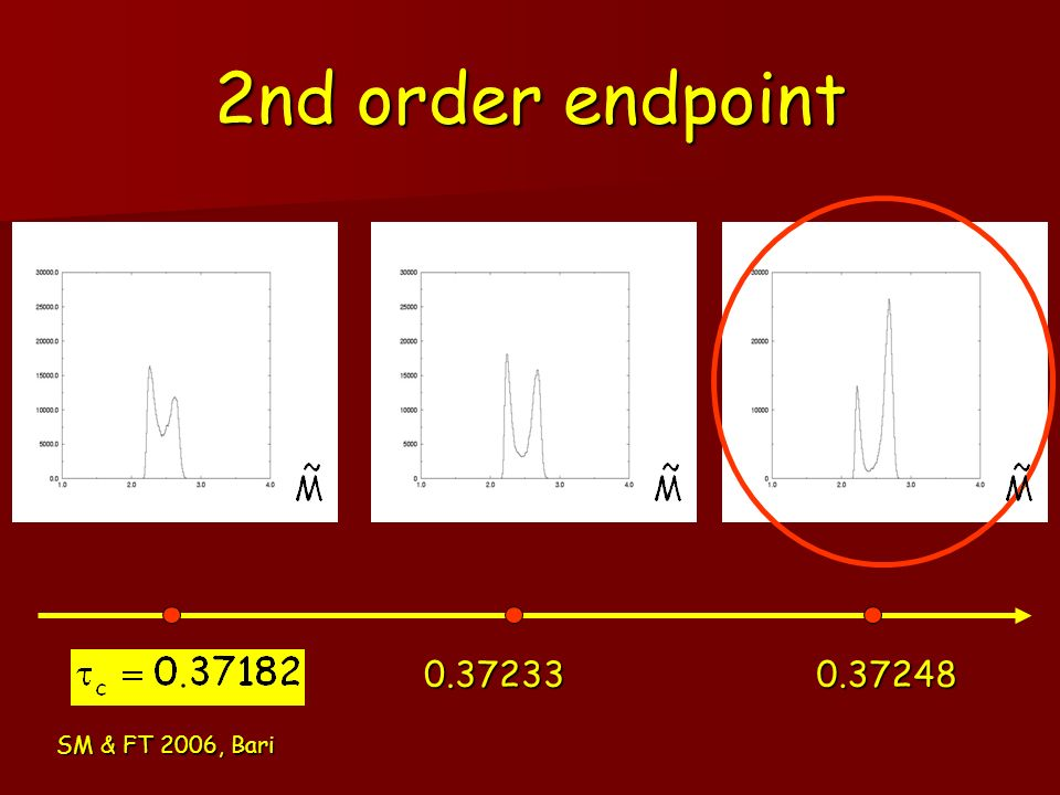 2nd order endpoint 0.37233 0.37248 SM & FT 2006, Bari