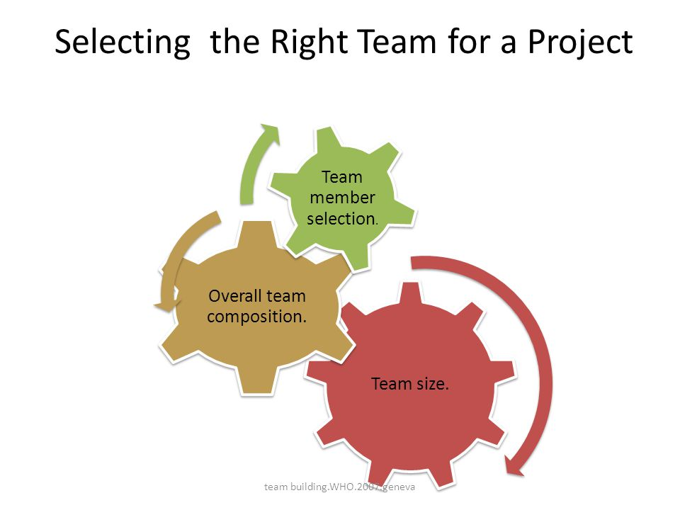 Selecting the Right Team for a Project