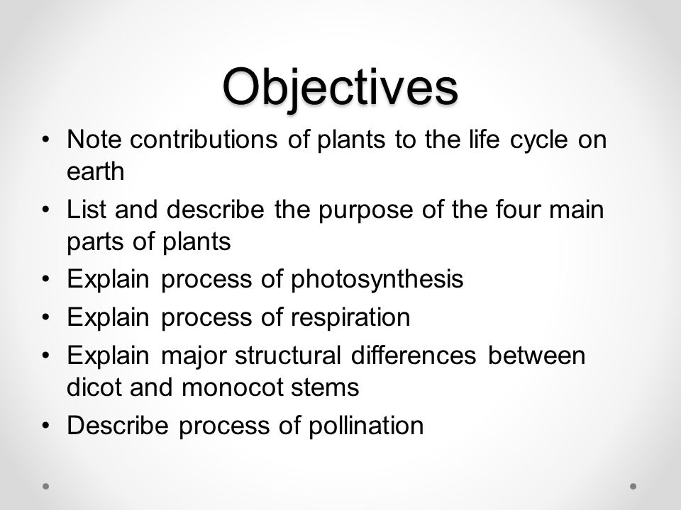Parts of Plants and their Functions - ppt video online ...