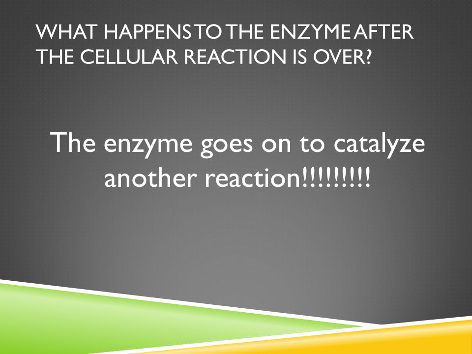 What happens to the enzyme after the cellular reaction is over
