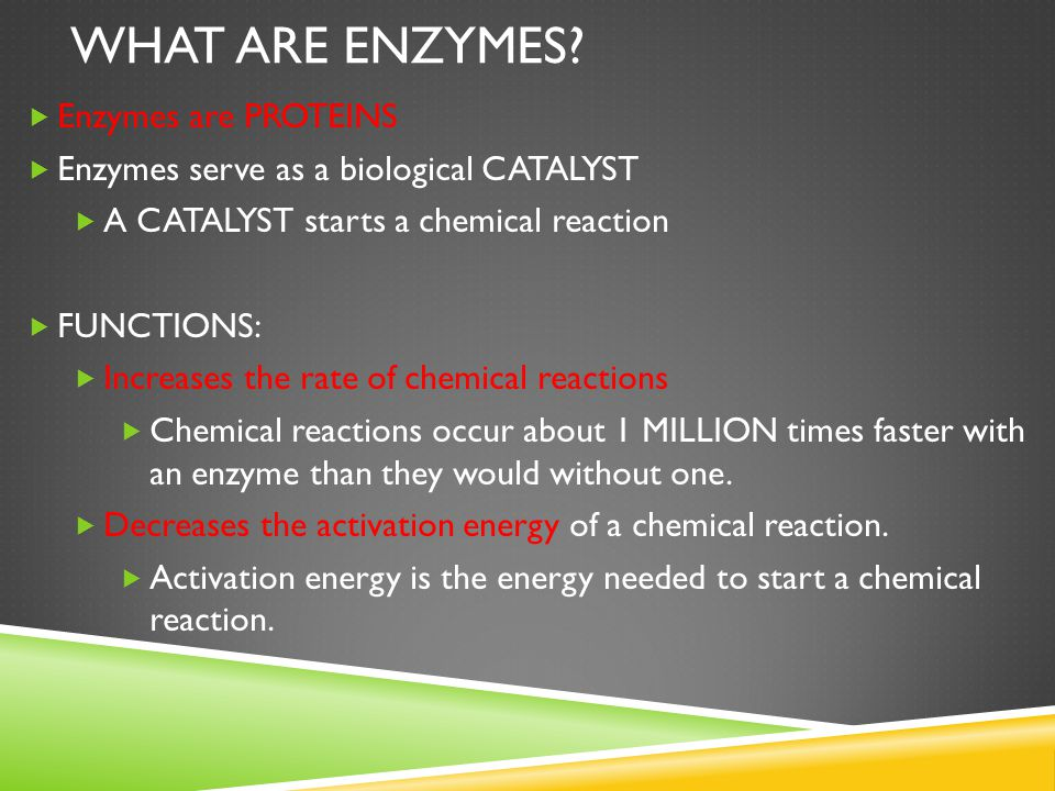 What are Enzymes Enzymes are PROTEINS