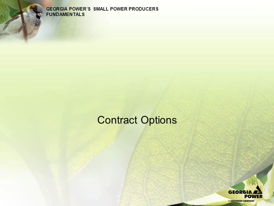 GEORGIA POWER'S SMALL POWER PRODUCERS FUNDAMENTALS